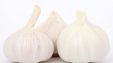 Photo of Manger de l'ail le soir : les bienfaits de ce condiment exceptionnel