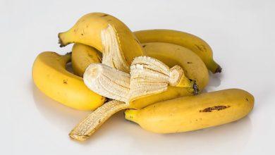 Photo of Régime banane : quels sont les atouts de ce fruit d'une telle cure ?