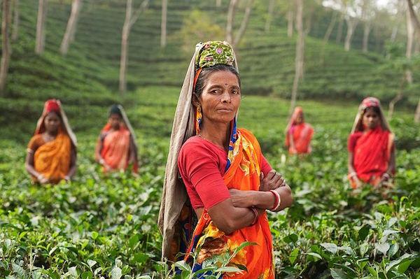 Photo of Cure dite sati : le régime minceur venu d'Inde pour perdre des kilos