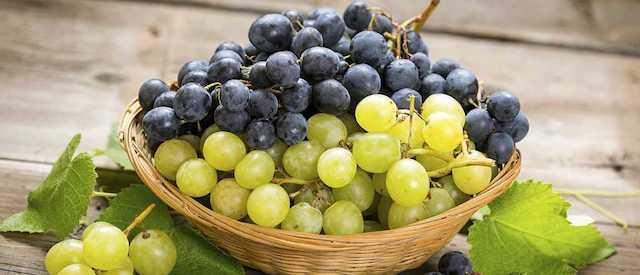 suivre une cure de raisin pour maigrir