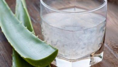 Photo of La pulpe d'aloe vera permet-elle de maigrir et de vraiment perdre du poids ?